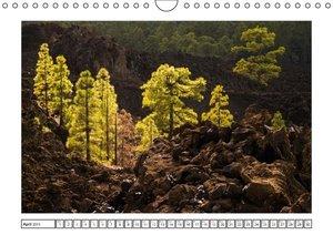 Tenerife - Magical Landscapes / UK-Version (Wall Calendar 2015 D