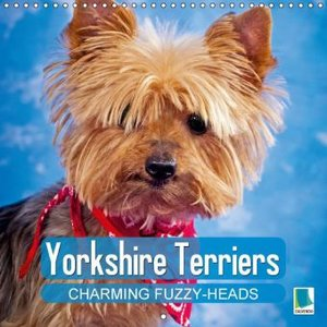 Calvendo: Yorkshire Terriers: Charming Fuzzy-Heads