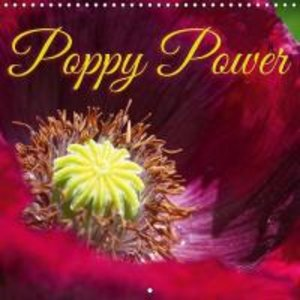 Poppy Power (Wall Calendar 2015 300 × 300 mm Square)