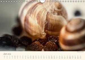 Food verkehrt (Wandkalender 2016 DIN A4 quer)