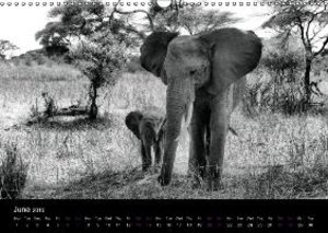 East Africa - Tanzania and Kenya / UK-Version (Wall Calendar 20
