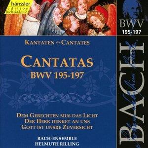 Kantaten BWV 195-197