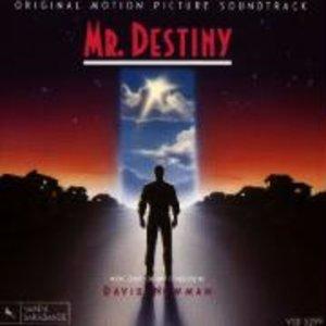 Mr.Destiny