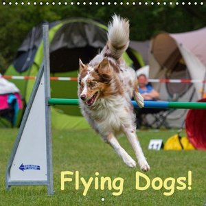 Flying Dogs! (Wall Calendar 2015 300 × 300 mm Square)