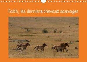Takh, les derniers chevaux sauvages (Calendrier mural 2015 DIN A