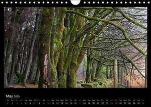 Scottish Woodlands (Wall Calendar 2015 DIN A4 Landscape)