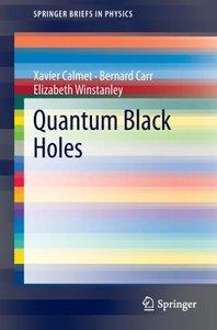Quantum Black Holes