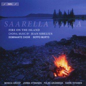Saarella palaa-Feuer auf der Insel
