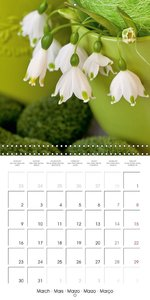 My lovely country garden (Wall Calendar 2015 300 × 300 mm Square
