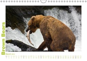 Brown Bears 2015 UK-Version (Wall Calendar 2015 DIN A4 Landscape