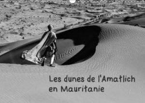 Les dunes de l\'Amatlich en Mauritanie (Calendrier mural 2015 DI