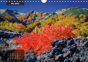 Feuerzauber am Ätna (Wandkalender 2016 DIN A4 quer)