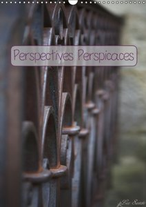 Perspectives Perspicaces (Calendrier mural 2015 DIN A3 vertical)