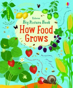 Big Picture Book How Food Grows