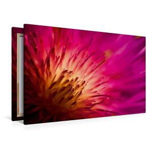 Premium Textil-Leinwand 120 cm x 80 cm quer color_impact_I