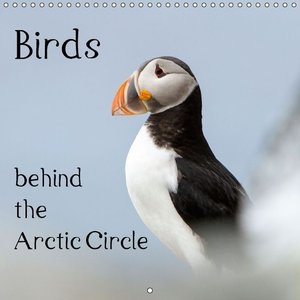 Birds behind the Arctic Circle (Wall Calendar 2015 300 × 300 mm