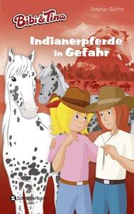 Bibi & Tina - Indianerpferde in Gefahr