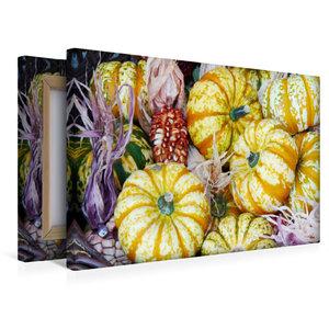 Premium Textil-Leinwand 45 cm x 30 cm quer Kürbisse