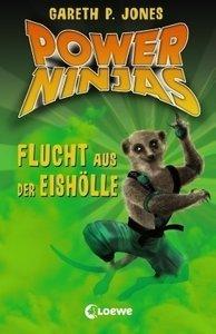 Power Ninjas 03. Flucht aus der Eishölle