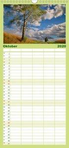 Bäume - Familienplaner hoch (Wandkalender 2020 , 21 cm x 45 cm,