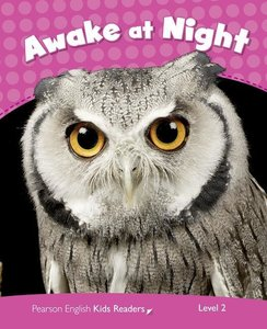 Penguin Kids CLIL Level 2. Awake at Night