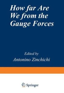 How Far Are We from the Gauge Forces