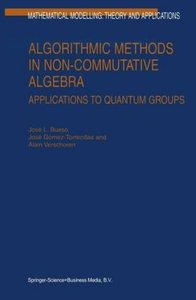 Algorithmic Methods in Non-Commutative Algebra