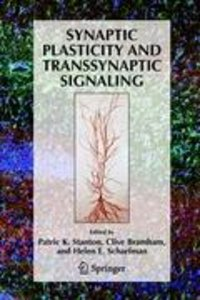 Synaptic Plasticity and Transsynaptic Signaling