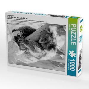 CALVENDO Puzzle Koala Ein Bär, der kein Bär ist 1000 Teile Lege