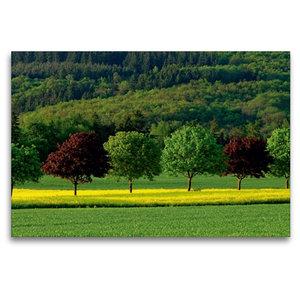 Premium Textil-Leinwand 120 cm x 80 cm quer Sommerfarben im Idst