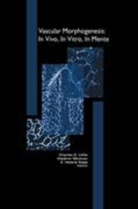 Vascular Morphogenesis: In Vivo, In Vitro, In Mente