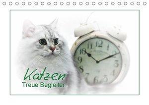 Katzen - Treue Begleiter (CH - Version) (Tischkalender 2019 DIN