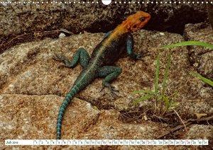 Safari Nijema - Unterwegs im Taita Hills und Lumo Nationalpark (