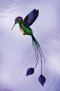 Premium Textil-Leinwand 60 cm x 90 cm hoch Kolibri