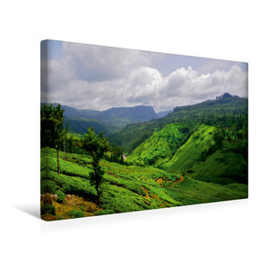 Premium Textil-Leinwand 45 cm x 30 cm quer Sri Lanka Hochland