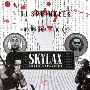 Skylax House Explosion (2CD)