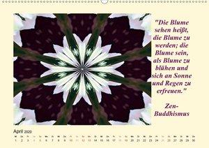 Meditation - Asiatische Weisheiten