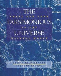 The Parsimonious Universe