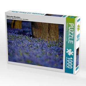 Sibirischer Blaustern 1000 Teile Puzzle quer