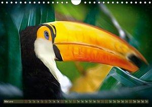 Farbenfrohe Vögel - Exoten ARTWORK
