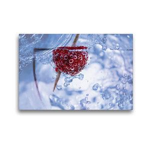 Premium Textil-Leinwand 45 cm x 30 cm quer Himbeere im Wassergla