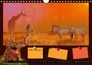 Tierwelt aus Mausopardia