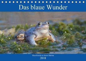 Das blaue Wunder - Moorfrösche in ihrem Habitat (Tischkalender 2