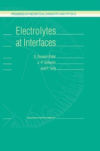 Electrolytes at Interfaces