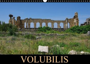 Volubilis (Calendrier mural 2015 DIN A3 horizontal)