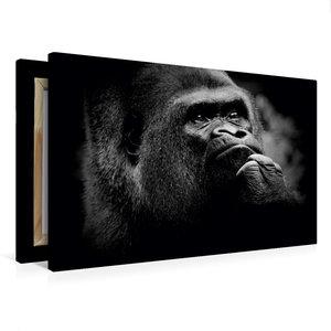 Premium Textil-Leinwand 75 cm x 50 cm quer Gorilla