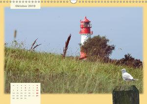 Leuchtt?rme Schleswig-Holsteins (Wandkalender 2019 DIN A3 quer)