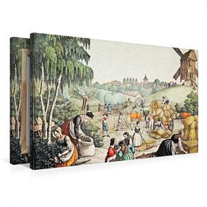 Premium Textil-Leinwand 75 cm x 50 cm quer Feldernte (Sommer), K