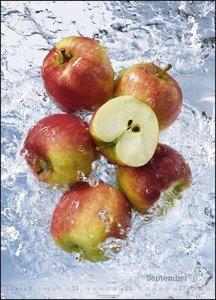 Fresh Food Kalender 2020