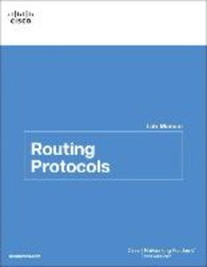 Routing Protocols Lab Manual